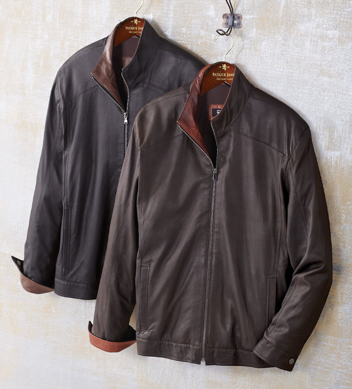 Remy Leather Blouson Jacket