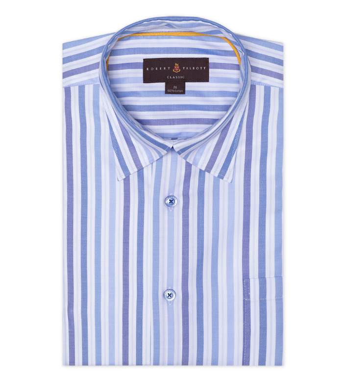 Robert Talbott Blue Stripe Hidden Button Down Long Sleeve Sport Shirt