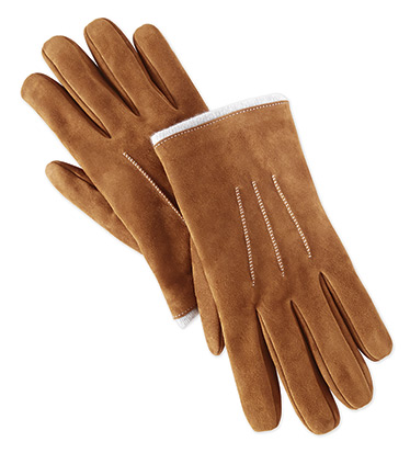 Alpine Escape Suede Gloves